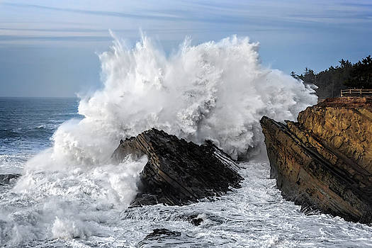 Shore Acres Waves by Wes and Dotty Weber