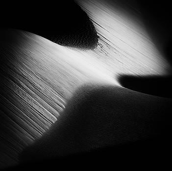 Sidewinder... by Kevin Evans