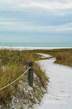 Siesta Key Beach 11 by Lisa Kilby
