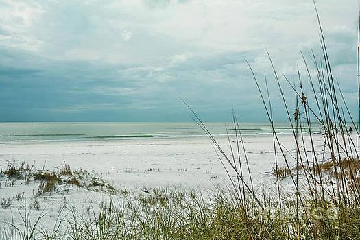 Siesta Key Beach 2 by Lisa Kilby