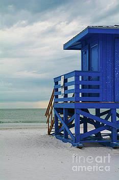 Siesta Key Beach 3 by Lisa Kilby