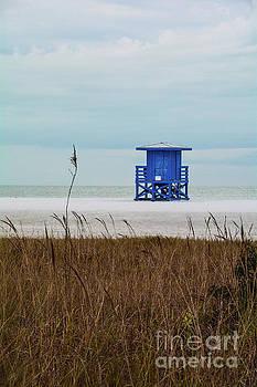 Siesta Key Beach 4 by Lisa Kilby