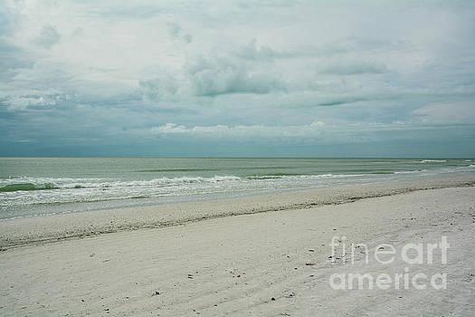 Siesta Key Beach 5 by Lisa Kilby