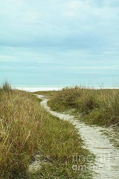 Siesta Key Beach 6 by Lisa Kilby
