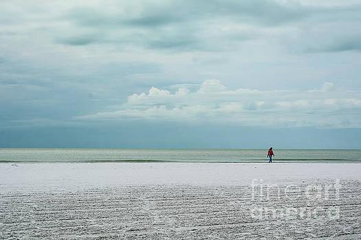 Siesta Key Beach 7 by Lisa Kilby