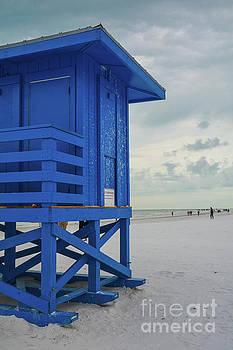 Siesta Key Beach 8 by Lisa Kilby