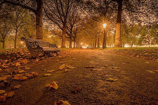 Thomas Gaitley - Silence in St. James Park