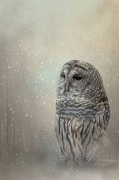 Silent Snow Fall by Kelley Parker