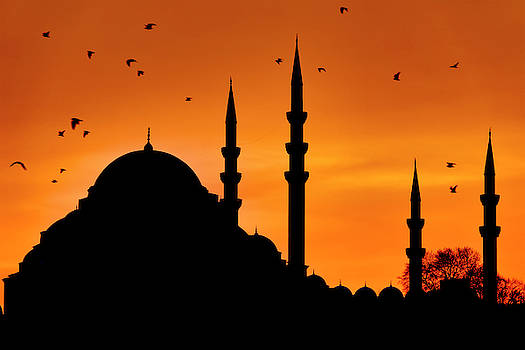 Silhouette of the Suleymaniye Mosque by Fabrizio Troiani