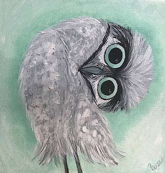 Silver and Teal Burrowing Owl by Brenda Boss