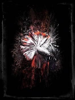 Silver Copper Rosetail  Betta Vertical Portrait by Scott Wallace Digital Designs