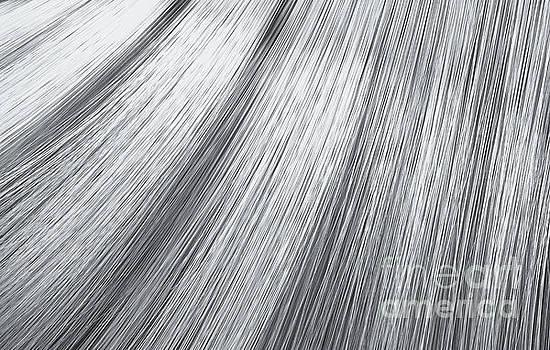 Silver Hair Blowing Closeup by Allan Swart