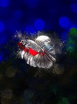 Silver Red Copper Rosetail Vertical  Betta Fish Portrait  by Scott Wallace Digital Designs