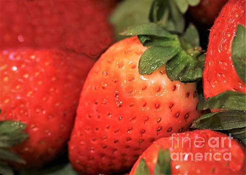 Diann Fisher - Simply Strawberry