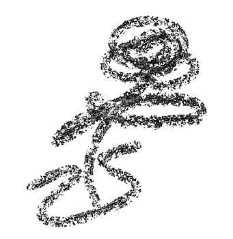 Single flower in vase sketch by Steve Clarke