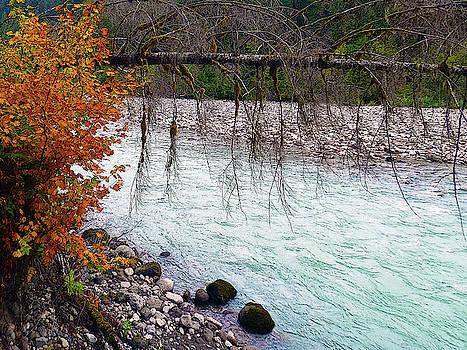 Susan Burger - Skagit River Scenic