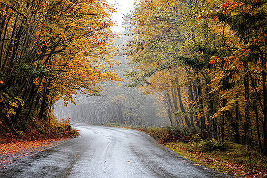 Skamania Road by Wes and Dotty Weber