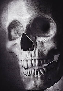 Skeleton Portrait in Black and White by Trina Ansel