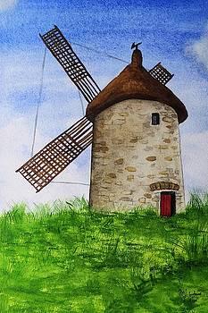 Skerries Mill by Martina Fagan