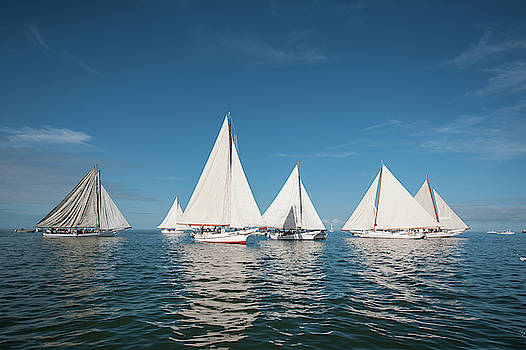 Skipjack Fleet by Mark Duehmig