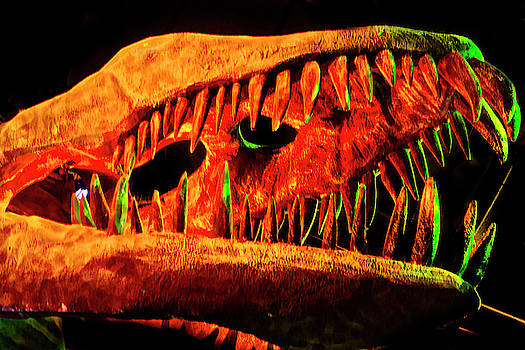 Skull Of A Plesiosaur by Miroslava Jurcik