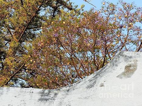 Sky Bouquet by Rosanne Licciardi