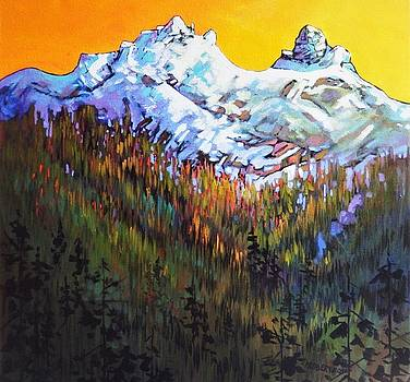 Sky Pilot and Co-Pilot Peaks, Coastal Range, South of Squamish, British Columbia by Catherine Robertson