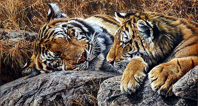 Sleepers - Tiger and Cub by Alan M Hunt