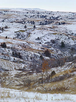 Slope County Snowdust by Cris Fulton