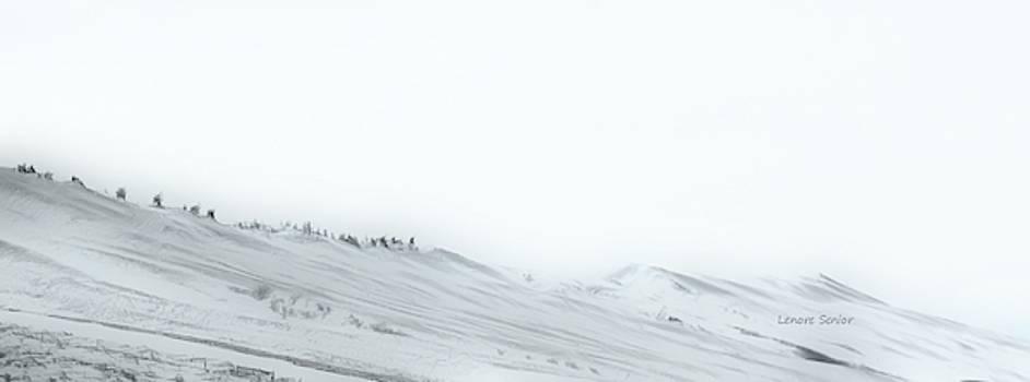 Slopes along Wyoming I-80 by Lenore Senior