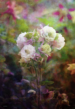 Small Bouquet 6302 IDP_2 by Steven Ward