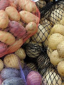 Lori Kingston - Small Potatoes