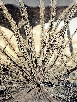 Smashed Window by Edward Fielding