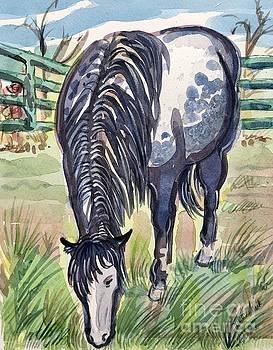 Smoky, Border Patrol Horse by Virginia Vovchuk