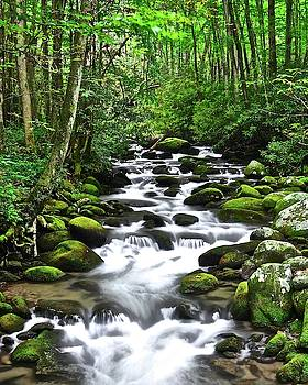 Frozen in Time Fine Art Photography - Smoky Mountain Paradise