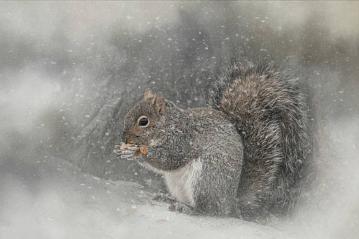 Snack Time by Kelley Parker