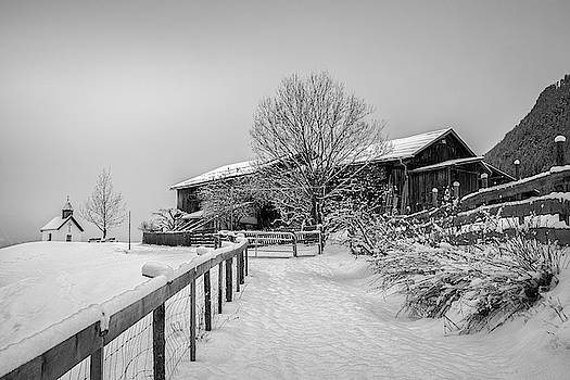Snow-Capped II by Ludwig Riml