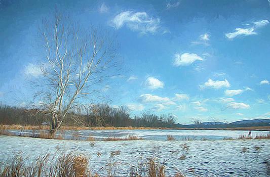Snow covered corn field by Alan Goldberg