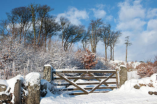 Snow Covered Gate and Wall ii by Helen Northcott