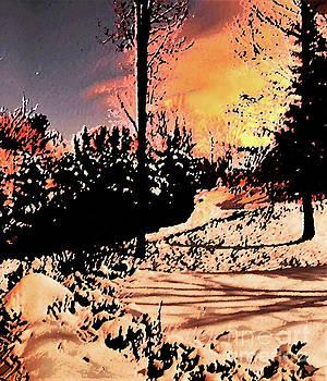 Sharon Williams Eng - Snow Glow 300