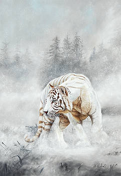 Snow Tiger by Peter Williams