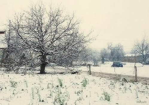 Snow time  by Marija Djedovic