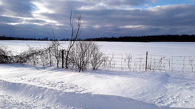 Snowdrift Fence by Susan Janus