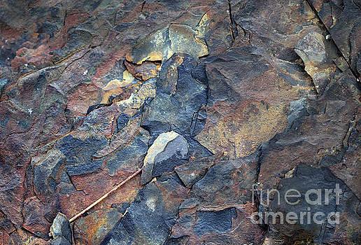 Snowflake on the Rocks by Karen Adams