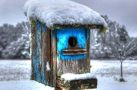Brian Cole - Snowy Blue Bird House