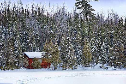 Susan Rissi Tregoning - Snowy Cabin in the Woods