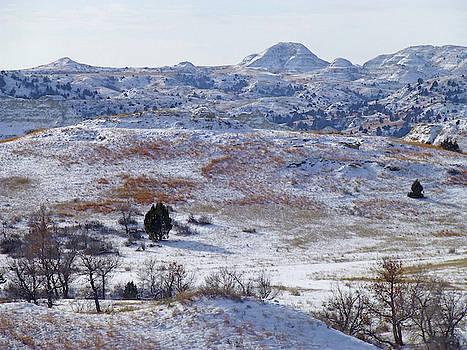 Snowy Dakota Prairie by Cris Fulton