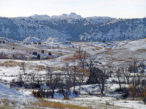 Snowy Dakota Territory by Cris Fulton