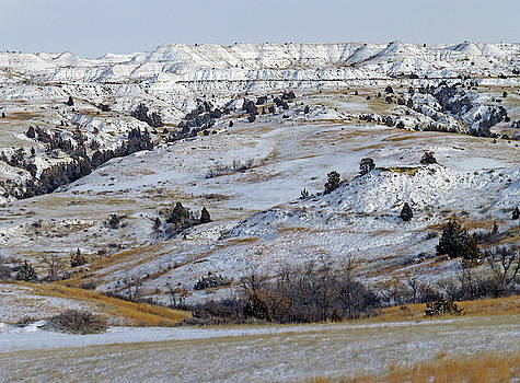 Snowy Dakota West by Cris Fulton
