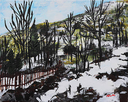 Snowy Mountain Road Mrkovici Village 201835 by Alyse Radenovic